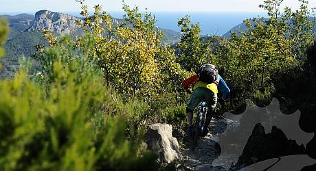Mountainbike Freeride Tour: Rollercoaster