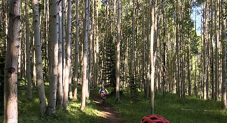 Mountainbike AllMountain Tour: Snodgrass Lupine Combo