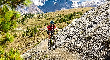 Mountainbike Enduro Tour: Passo Gallo Passo Trela