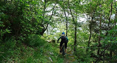 Mountainbike Enduro Tour: Bernina - Col d Anzana