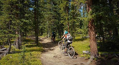 Mountainbike AllMountain Tour: Colorado Trail Section SIX