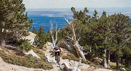 Mountainbike Freeride Tour: Pikes Peak Top of Colorado