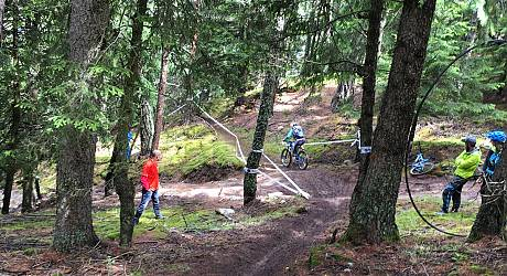 Mountainbike Freeride Tour: Tarscher Alm Hammer Trails